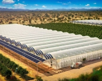 31378b9-3studyof-sundrop-farms-in-australia007