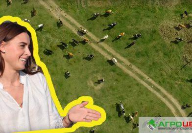 Дружина футболіста розповіла про неймовірну ферму свого чоловіка  (ВІДЕО)