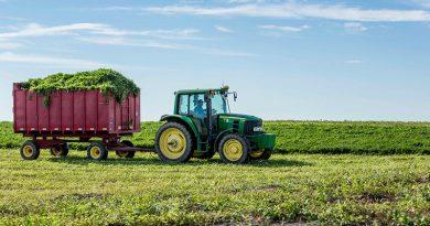 Трудові відносини на фермі: правові основи