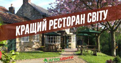Найкращий ресторан у світі знаходиться в селі (16 фото)