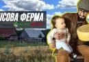 """Як зробити сирний льох: поради """"лісового фермера"""" з Київщини (відео)"""