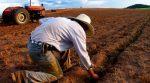 Фермери України можуть отримати кредит до 500 тисяч гривень