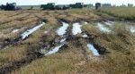 Фермерів попереджають про можливі затоплення сільгоспугідь