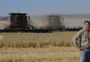 The number of farmers decreased significantly in Ukraine