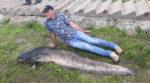 Прип'ятська риба: рибалка зловив гігантського сома