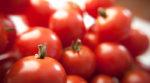 Помідори за ціною золота: чому дорожчають українські томати