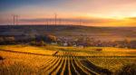Активное развитие сельского хозяйства ускоряет изменения климата