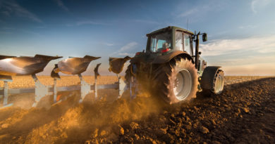 Analysts reported: How much money farmers lack for sowing?