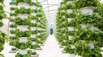 The UK Implements Vertical Farming to Reduce Their Dependency on the EU