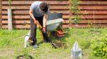 Эксперты назвали преимущества осенней посадки деревьев