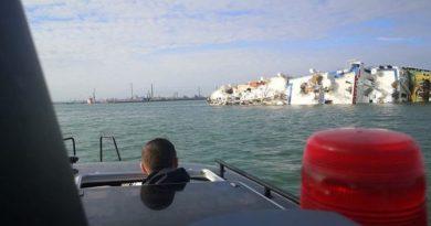В Чорному морі перевернулося судно з 15 000 овець