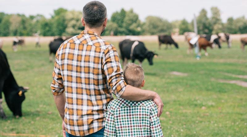 Відкрити сімейну ферму в Україні стало простіше