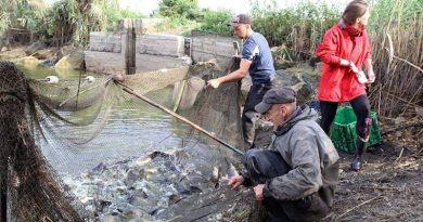 На Львівщині планують збирати чорну ікру