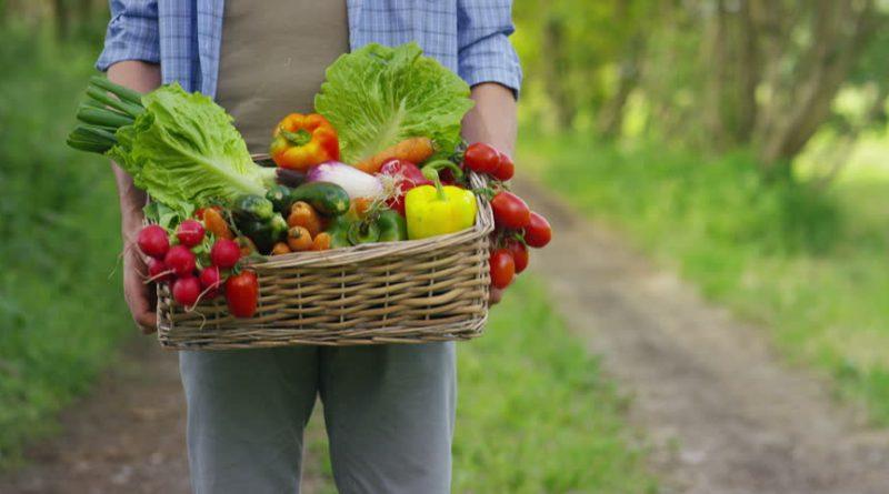 Вчені встановили, який овоч здатен відновлювати легені курців