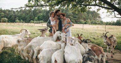 Молодий фермер власноруч майструє екстримальні гойдалки та розвиває екотуризм