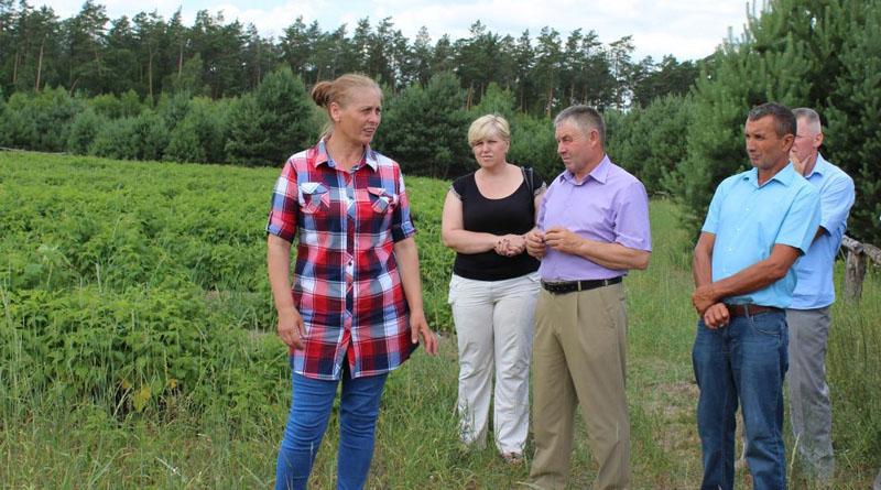 Прибуткова справа: родина заробітчан заснувала на Волині органічну ферму