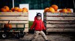 В сільських школах навчаються щасливіші діти (дослідження)
