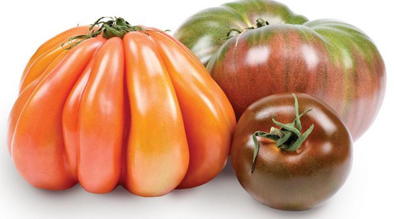 Дивні форми та незвичні кольори: на ринку з'явився новий сорт органічних томатів