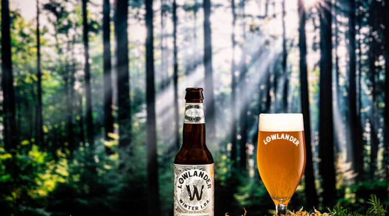 Нідерландська броварня Lowlander зварила пиво з ялинок