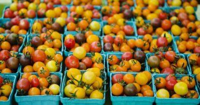 Розмір не головне: на ринку набирають популярності міні-овочі
