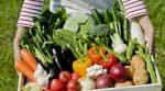 Цього року українські фермери зберуть подвійний урожай