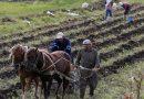 Український фермер станцював феєричний танок прямо на полі (відео)
