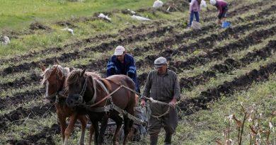 A Ukrainian farmer performed a fun dance in the field (video)
