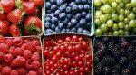 Україна нагодує Європу і Китай ягодами