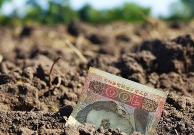 В Україні впав рівень зарплат в агросекторі