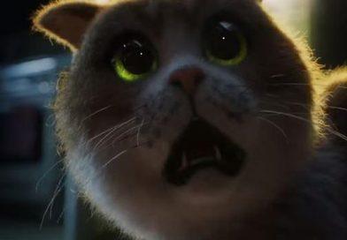 Випустили перший фільм жахів для котів: головний антигерой – огірок (відео)