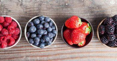 В Україні розробляють унікального робота, який збиратиме ягоди