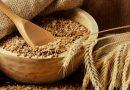 Україна зібрала 80% врожаю зернових