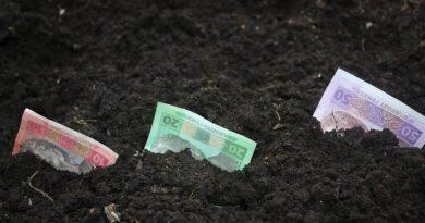 Орендна плата за сільськогосземлі в Україні зменшилася на 22%