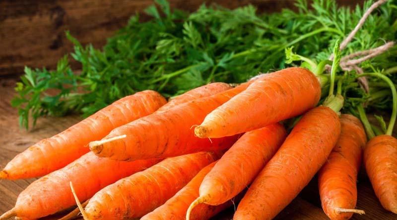 Фермер з Волині поділився секретами вирощування супер солодкої моркви